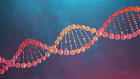 How DNA Works | HowStuffWorks