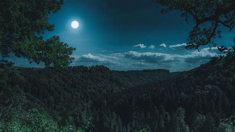 Wallpaper forest, mountains, moon, clouds hd, picture, image