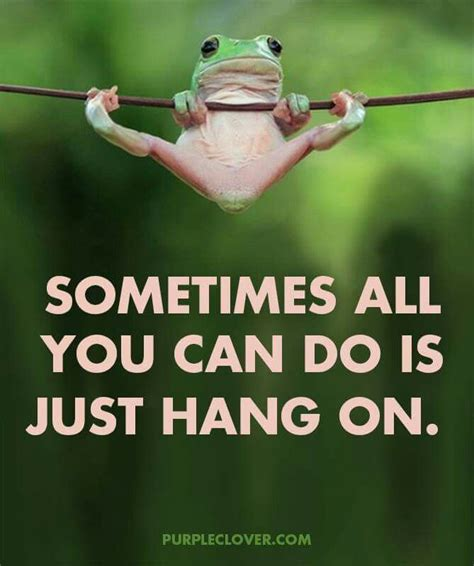 hang in there | Funny quotes, Hang in there quotes, Good
