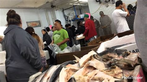 San Pedro Early Saturday Morning Wholesale State Fish